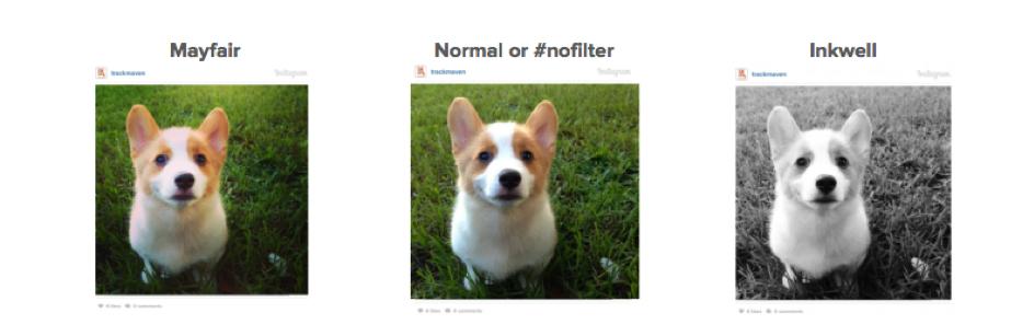 filtera
