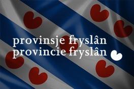 Provincie Friesland visueel notuleren